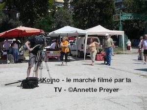 Koino_marche_TVlocale-300.jpg